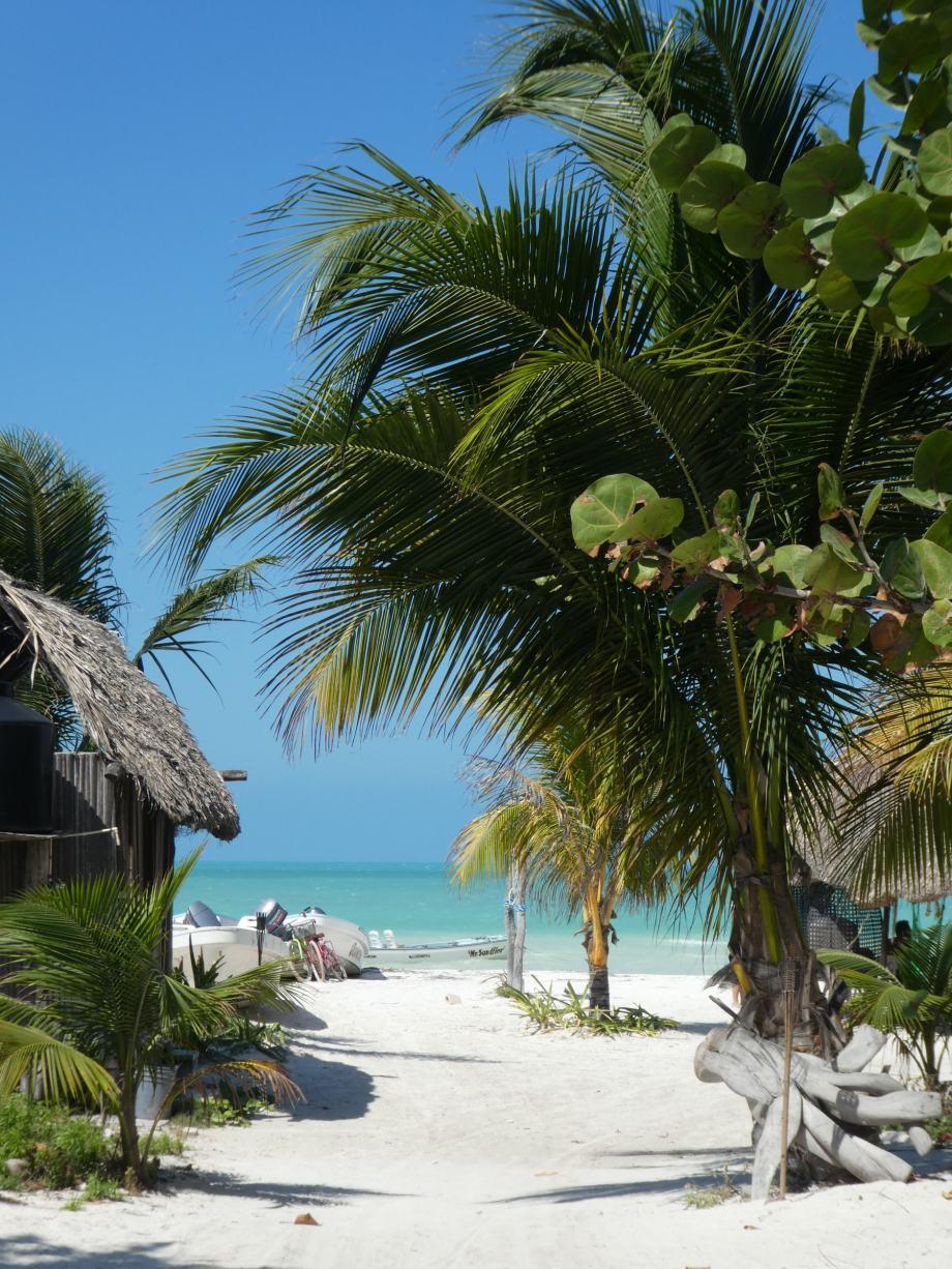 Isla Holbox, rue pour aller à la plage.JPG