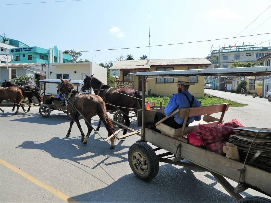 Mennonites à San Ignacio