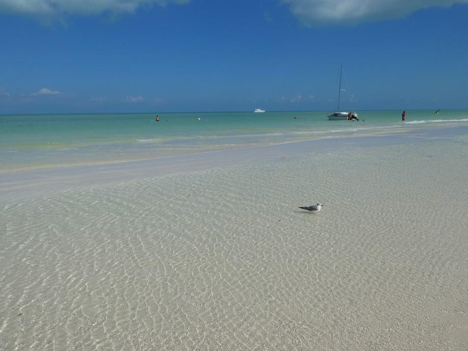 playa-de-la-isla-holbox