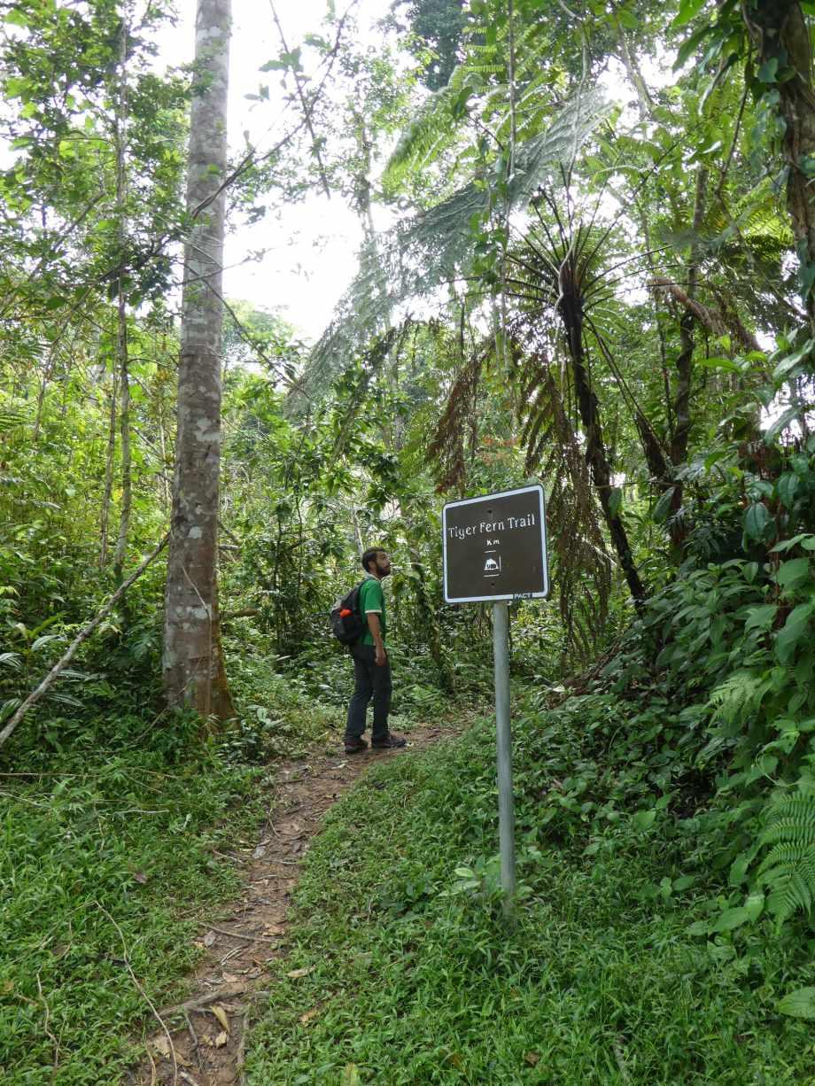 trail-a-la-reserve-de-cockscomb
