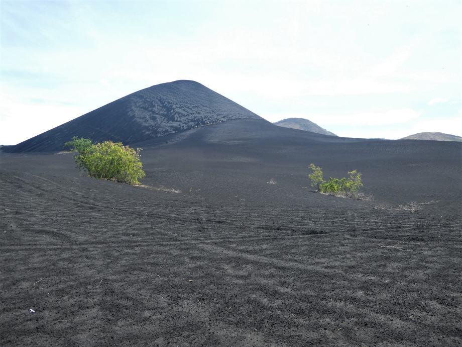 le cerro negro