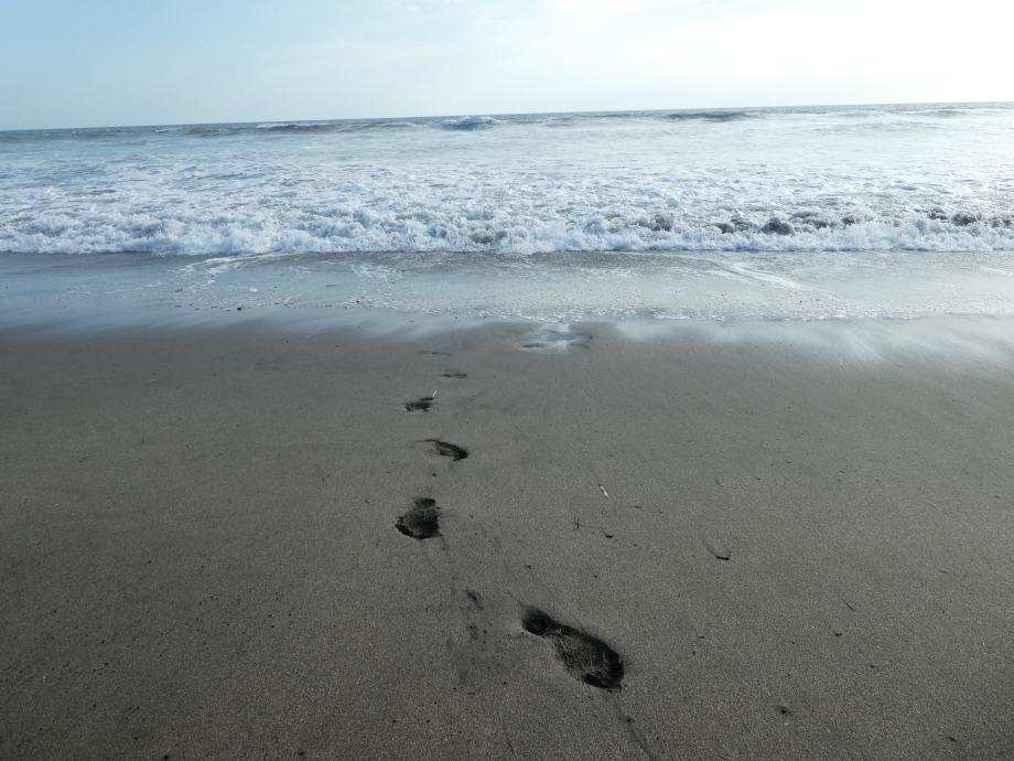 playa poneloya -