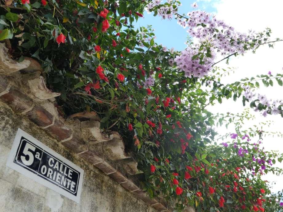 Ruelle d'Antigua