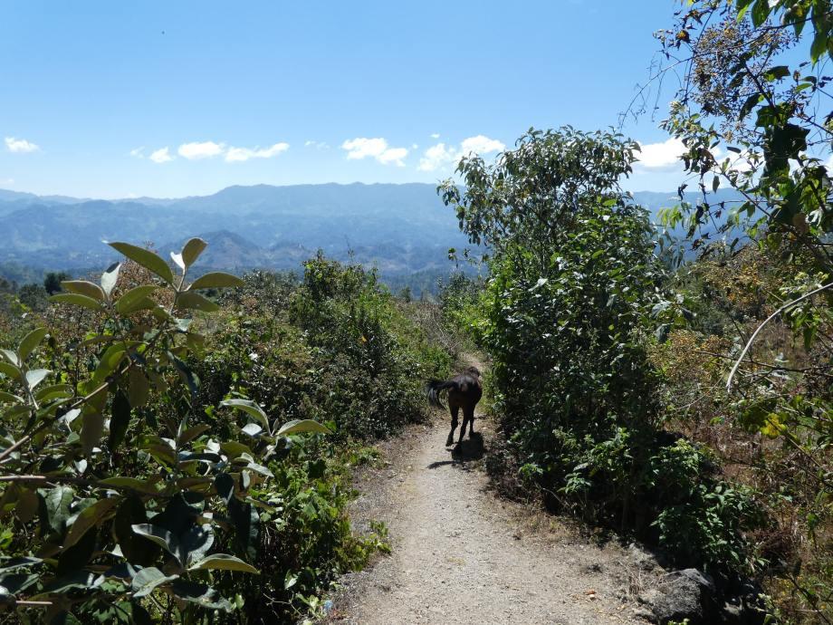 sur-le-chemin-du-cerro-san-andres