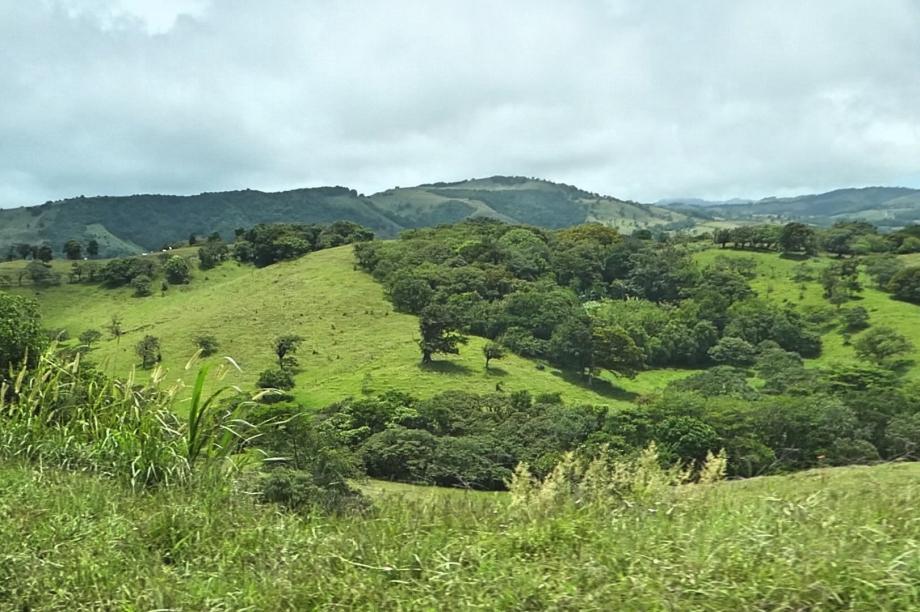 La route vers Monteverde
