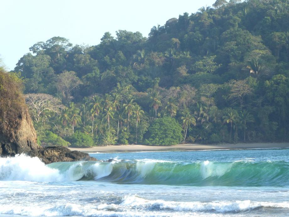 playa manuel antonio -