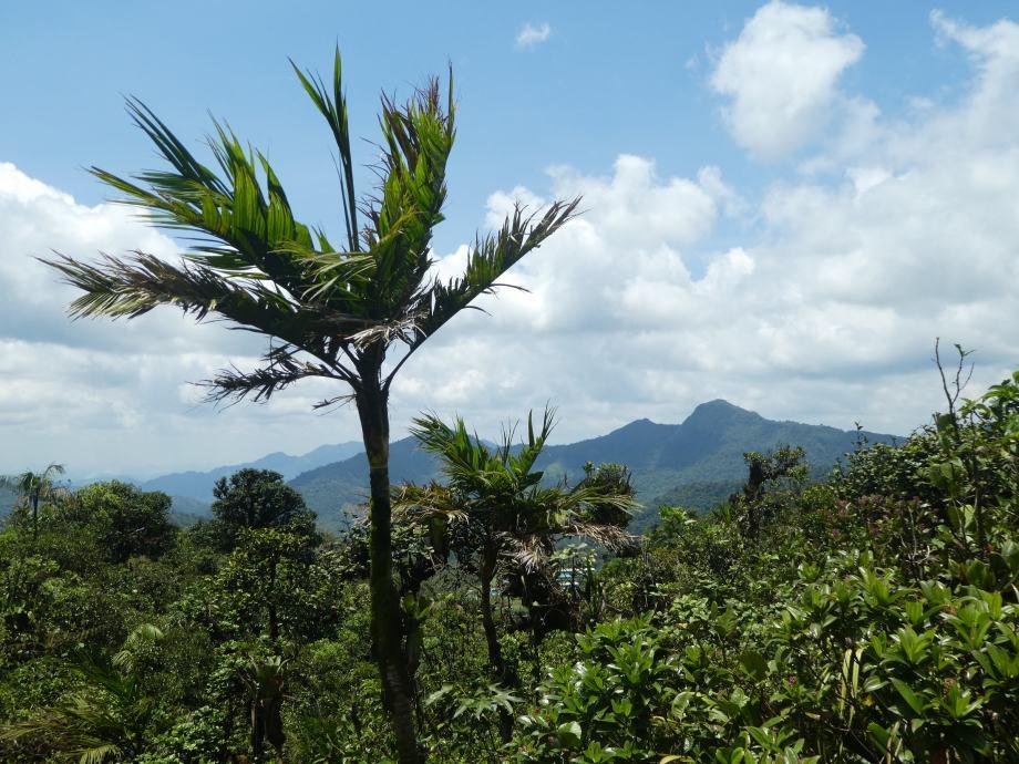 vue du Cerro Gaital
