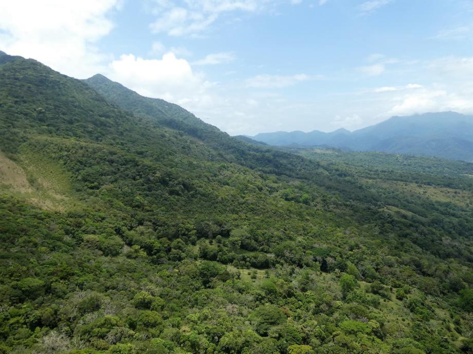 vue du Cerro Tute -