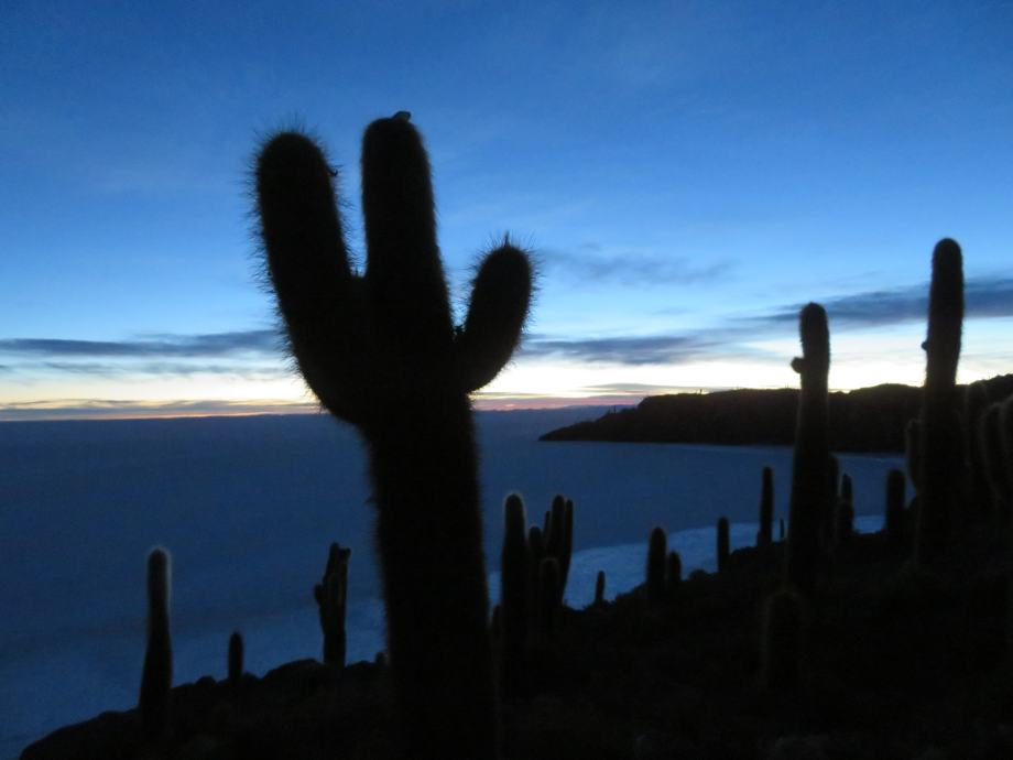 lever de soleil sur l'île aux cactus -