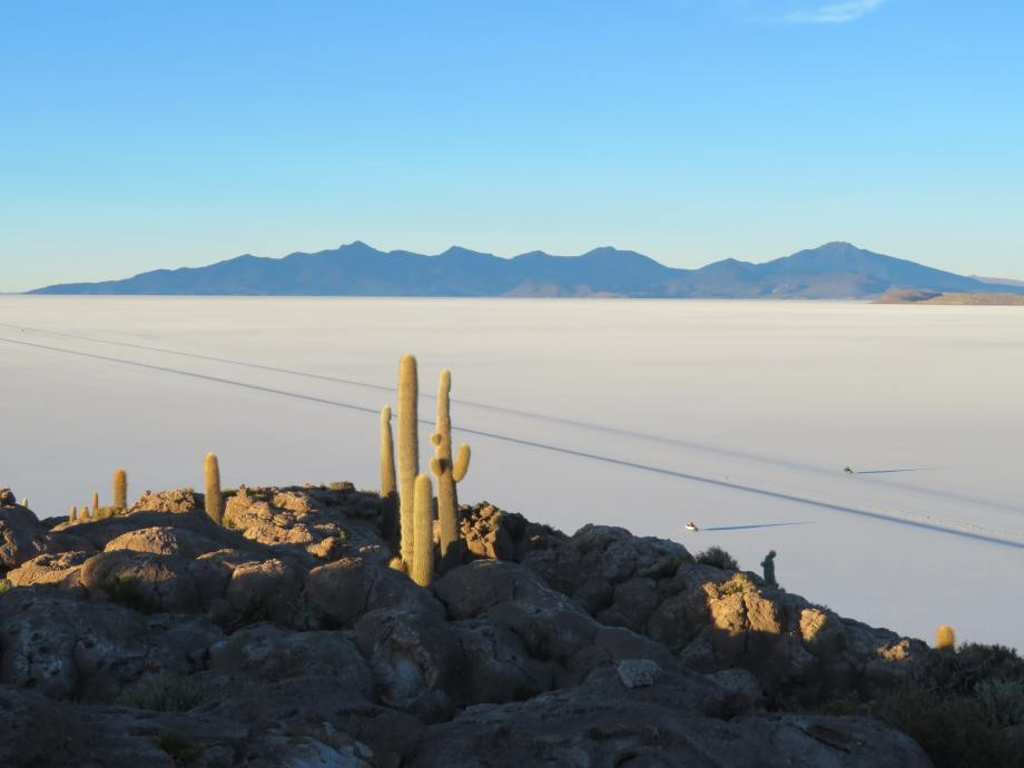 lever de soleil sur l'île aux cactus --