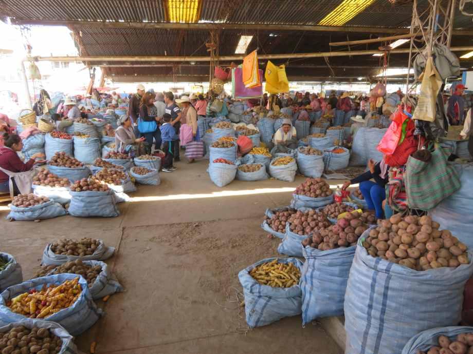 marché de la pomme de terre
