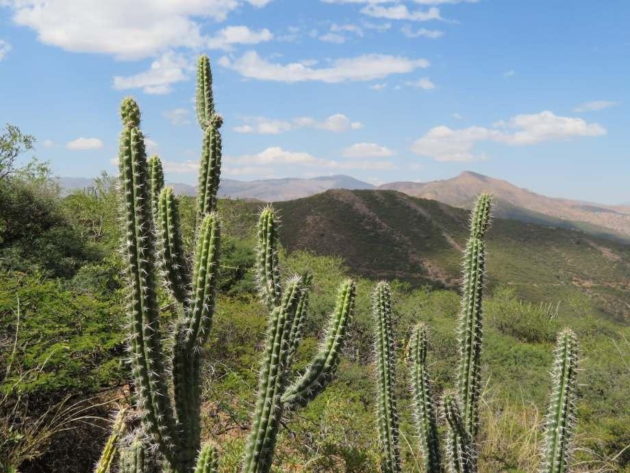 montagnes autour de Cochabamba