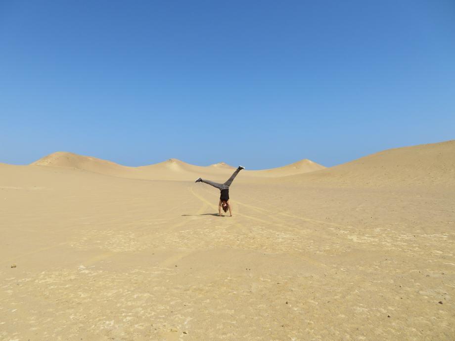 dans le désert de Paracas (1)