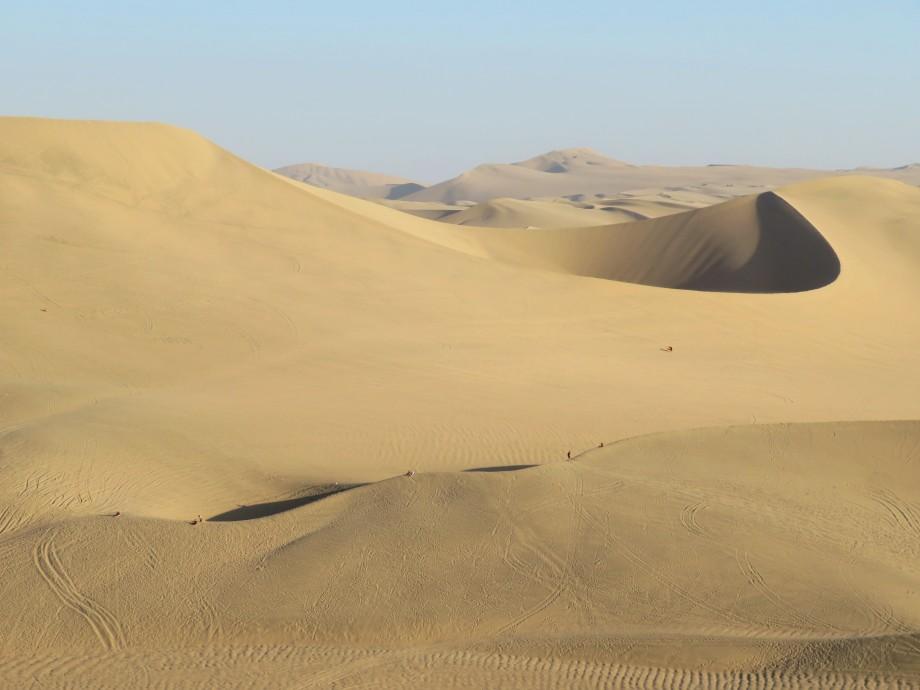 Les belles dunes autour de l'Oasis (12)