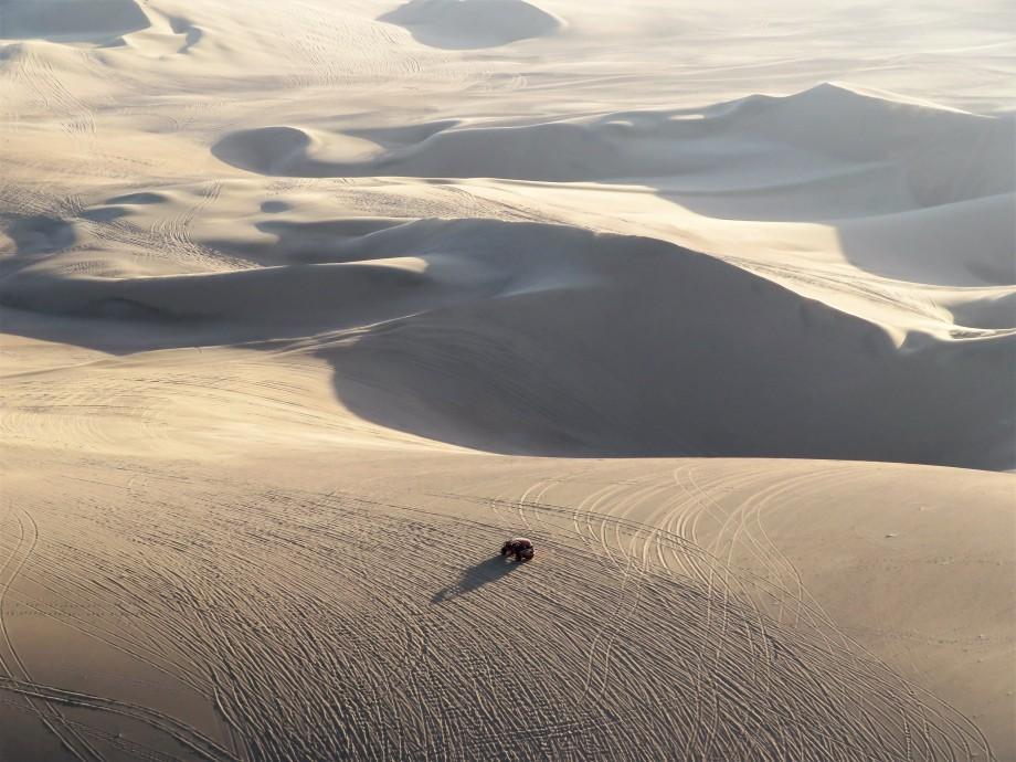 Les belles dunes autour de l'Oasis (15)