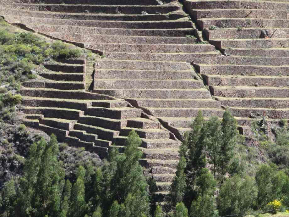 Ruines de Pisac (1)