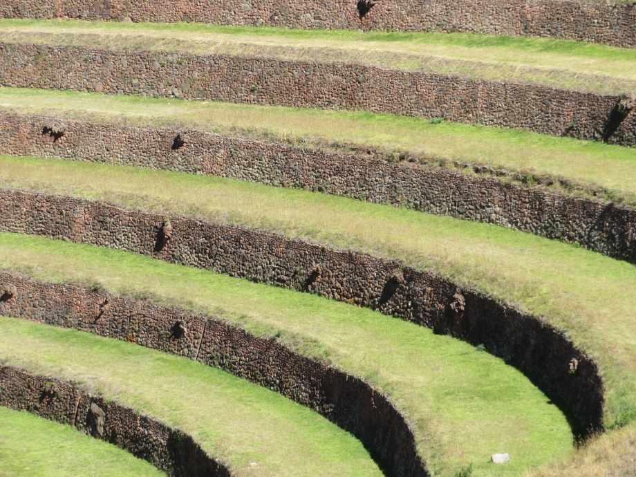 Ruines de Pisac (14)