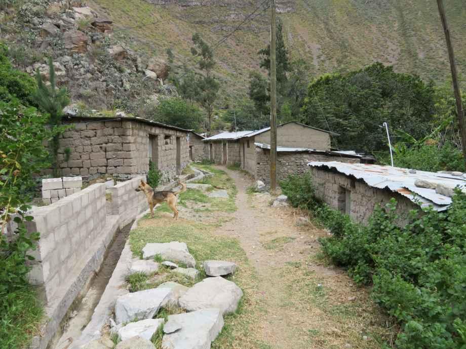 village de Latica