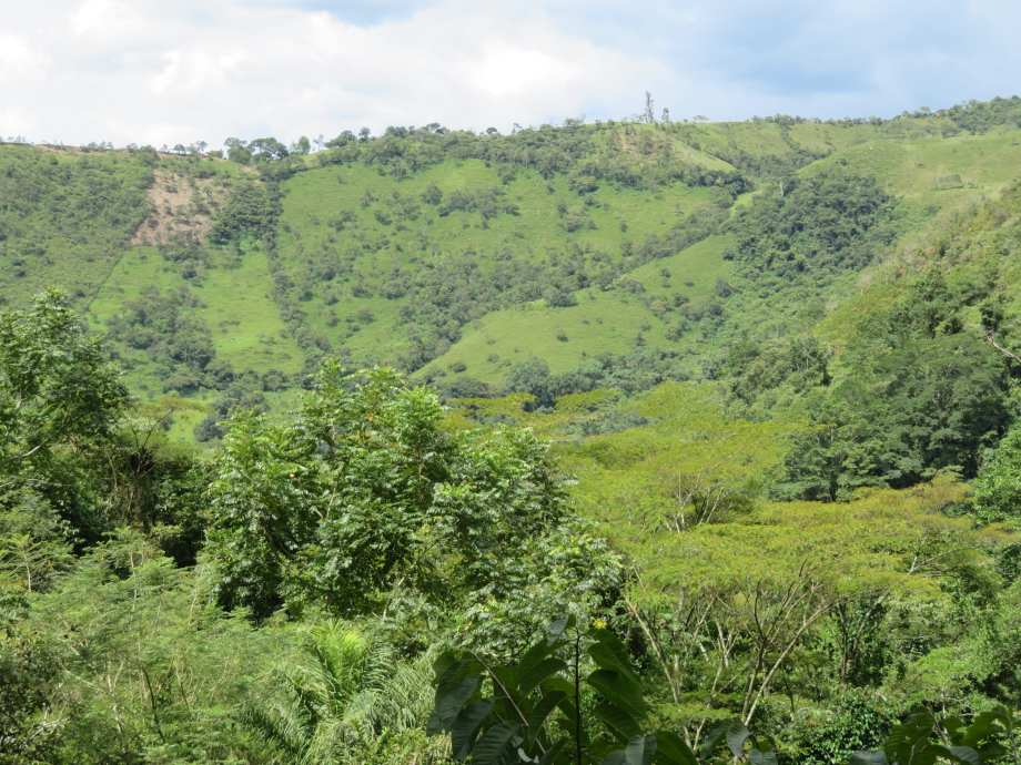 Cascada de Juan Curi (5)