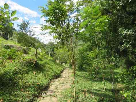 Cascada de Juan Curi (6)
