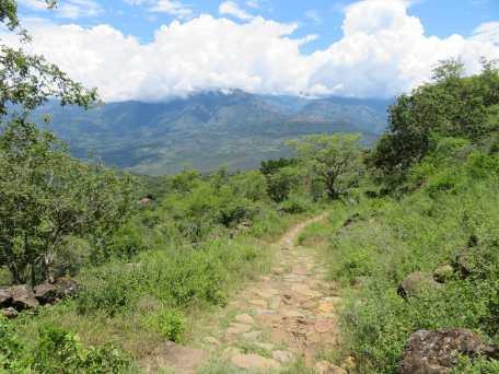 Trek d'el Camino Real (3)