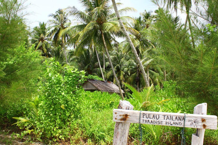 paradise island (2)