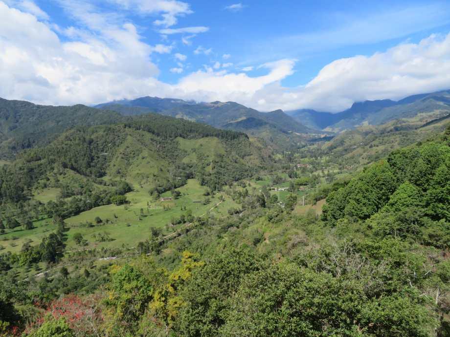paysages de la région du café (2)