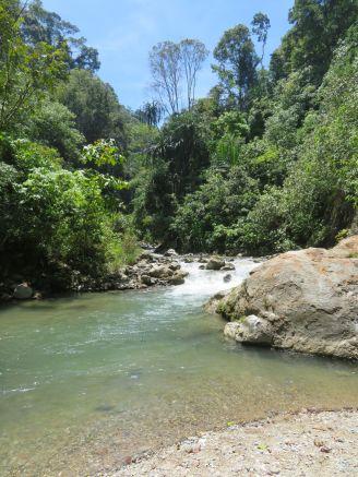 rivière du camp (1)