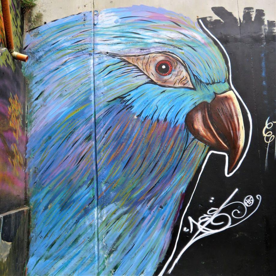 street art Medellin (12)