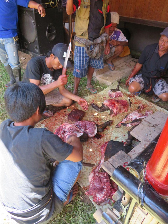 cérémonie Toraja (3)