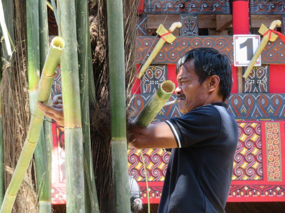 cérémonie Toraja (8)