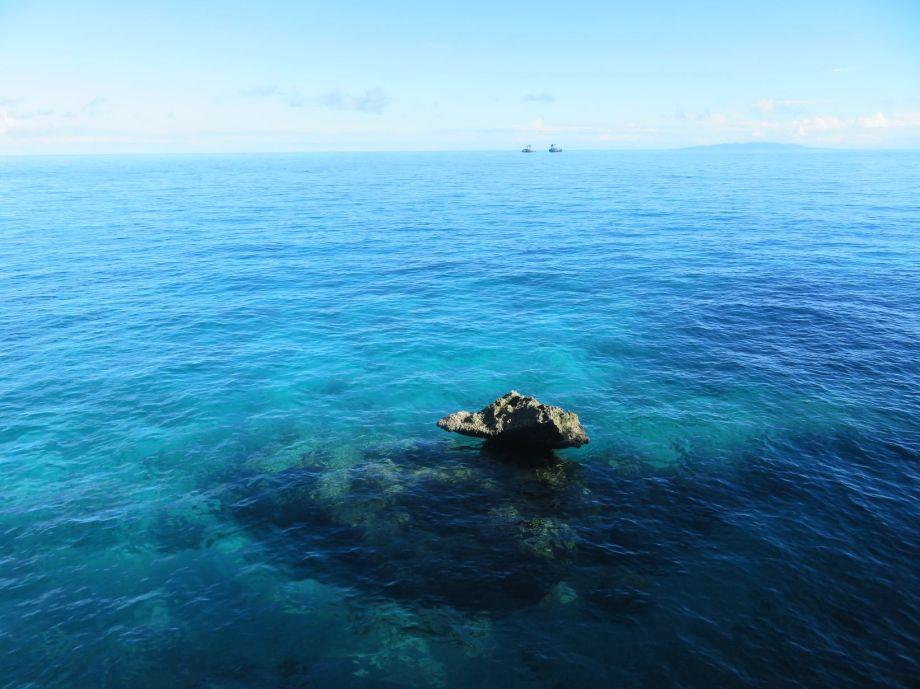 notre île paradisiaque (2)