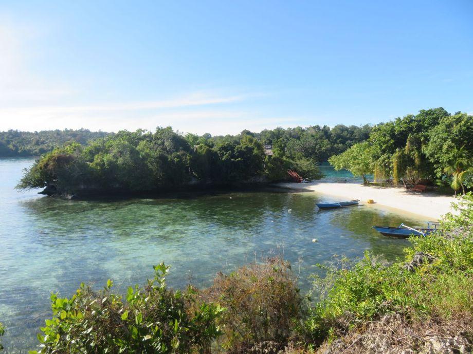 notre île paradisiaque (3)